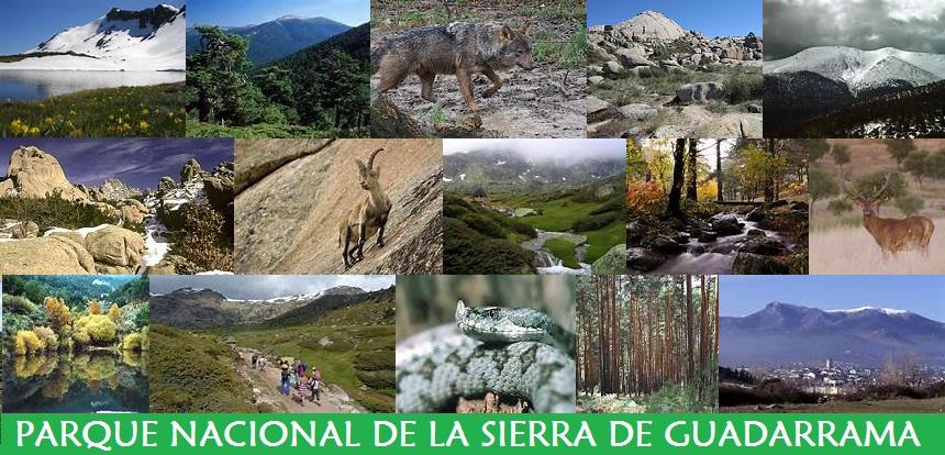 Parque Nacional de la Sierra de Guadarrama
