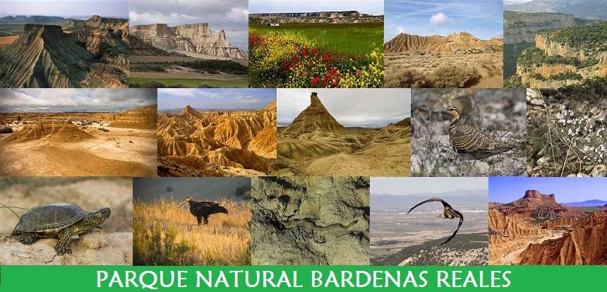 Parque Natural Bardenas Reales