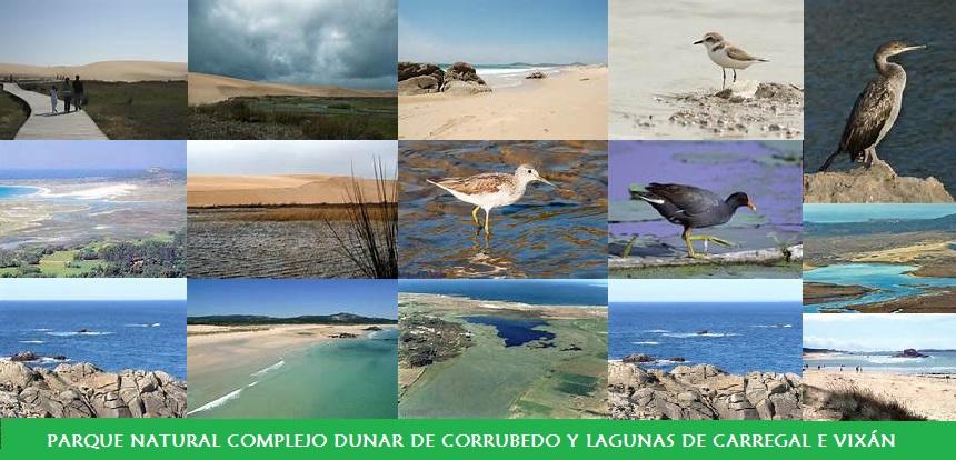Parque Natural Complejo Dunar de Corrubedo y Lagunas de Carregal e Vixán