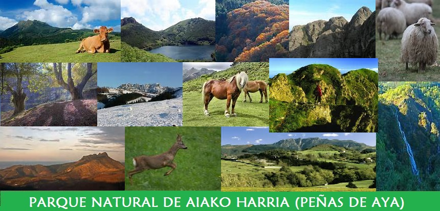 Parque Natural de Aiako Harria (Peñas de Aya)