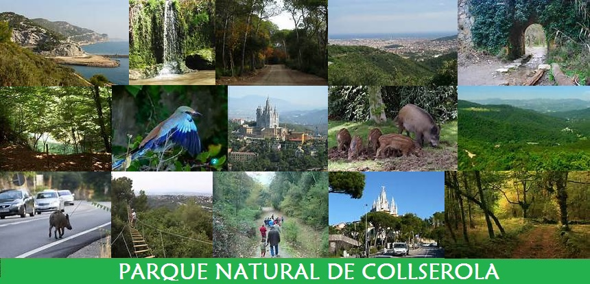 Parque Natural de Collserola