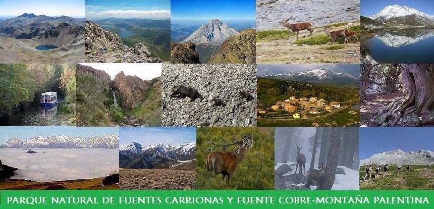Parque Natural de Fuentes Carrionas y Fuente Cobre-Montaña Palentina