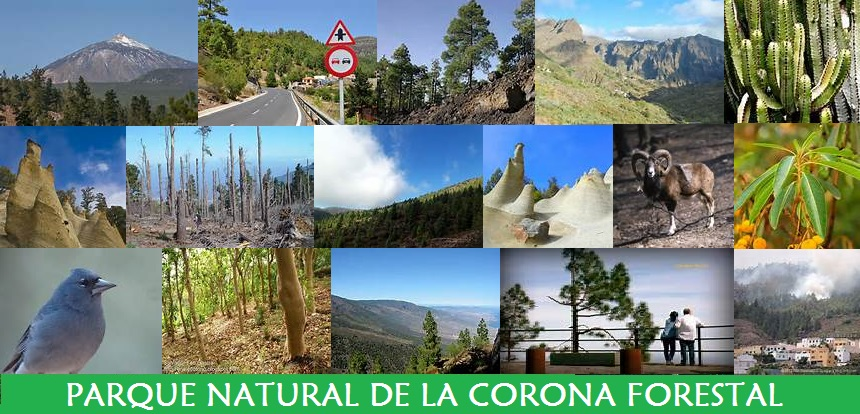 Parque Natural de la Corona Forestal