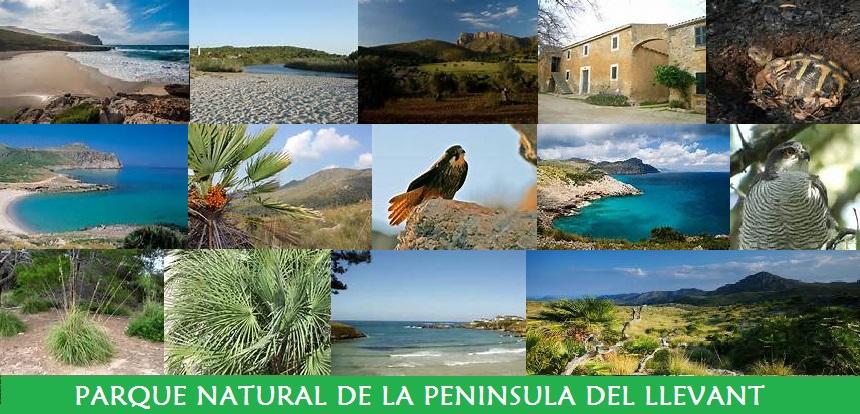 Parque Natural de la Península del Llevant