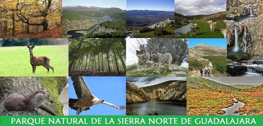 Parque Natural de la Sierra Norte de Guadalajara