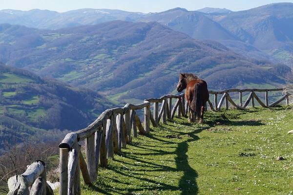 Parque Natural en Asturias