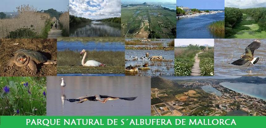 Parque Natural de S´Albufera de Mallorca