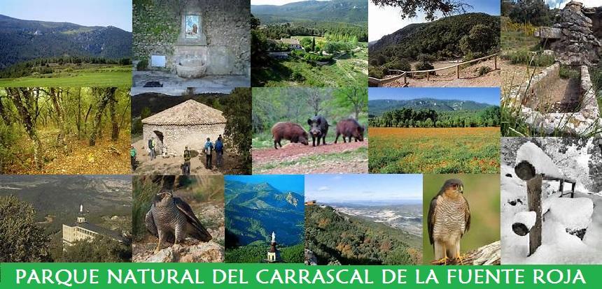 Parque Natural del Carrascal de la Fuente Roja