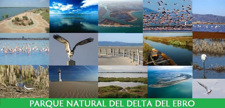 Parque Natural del Delta del Ebro