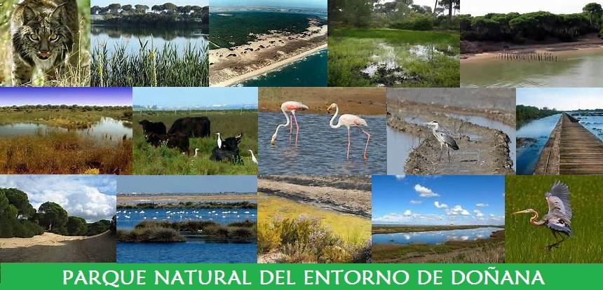 Parque Natural del Entorno de Doñana