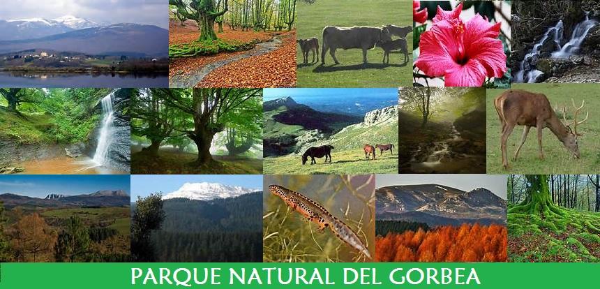 Parque Natural del Gorbea