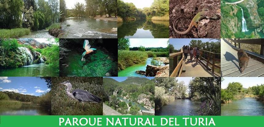 Parque Natural del Turia