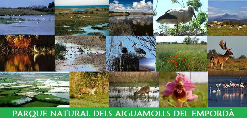 Parque Natural del Aiguamolls/Marismas del Empordà