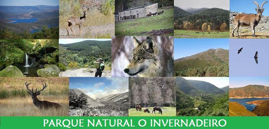 Parque Natural O Invernadeiro