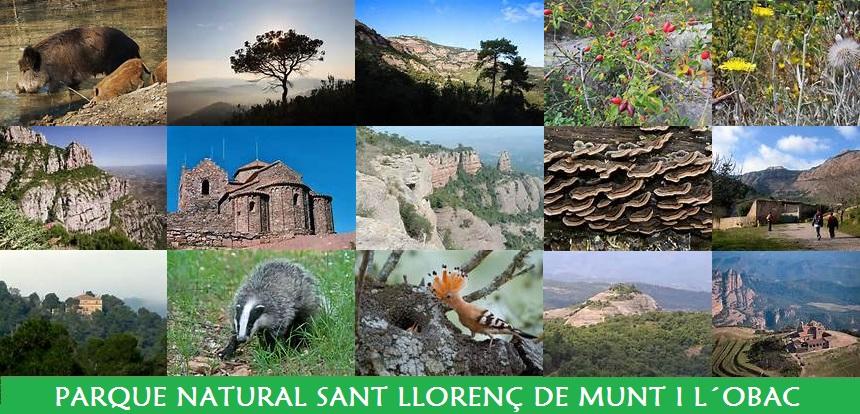 Parque Natural de Sant Llorenç de Munt i L´Obac