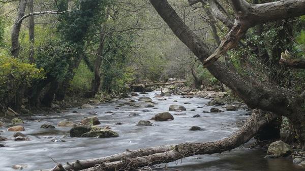 Parque Natural de España